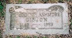 Theodosie Ashmore Gibson