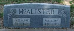 Nettie Ann McAllister