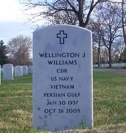 Wellington J Williams