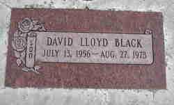 David Lloyd Black