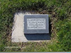 Ellener Elley Helen Hecox <I>Taylor</I> Lauck