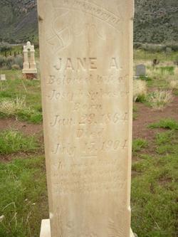 Jane Allie <I>Hanks</I> Sylvester