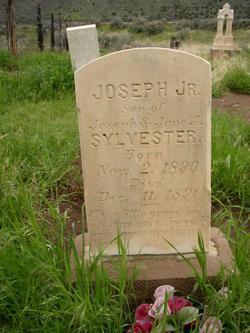 Joseph Sylvester, Jr