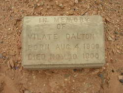 Vilate Dalton