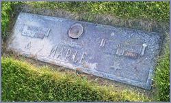 Ova <I>McGraw</I> Maple