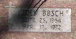"""Joseph Harry """"Joey"""" Bosch, Jr"""