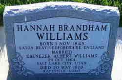 Hannah <I>Brandham</I> Williams