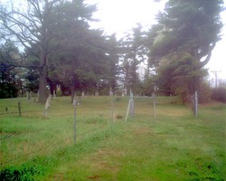 Munson Cemetery