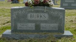 Sarah J Burks