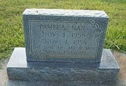 Pamela Nan Akins