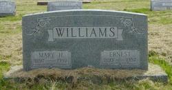 Mary H Williams