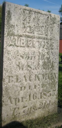 Albert E. Blackman