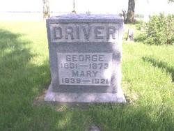 George James Driver