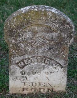 Nettie J Eden