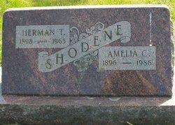 Amelia C Shodene
