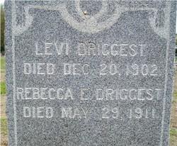 Levi Driggest