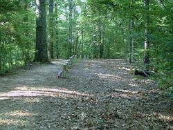 Old Trace Confederate Cemetery