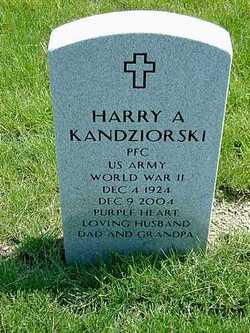 Harry Andrew Kandziorski