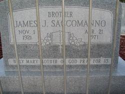 James J Saccomanno