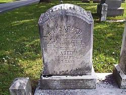 Elizabeth <I>Brenser</I> Metzger