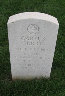 Carpus Curry