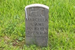 Marcella Adams