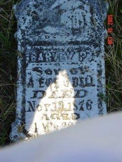 Harvey P. Bell