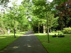 Hauptfriedhof Kassel