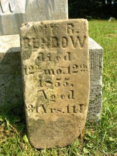 Amy Rillie <I>Harvey</I> Benbow