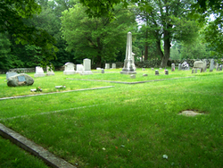 Fish Cemetery #18
