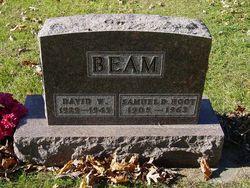 David W. Beam