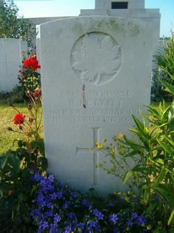 Private William Pettitt