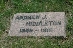 Andrew J Middleton