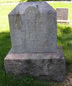 Mary B Kribs