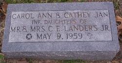 Carol Ann Landers