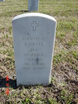 David C Curtis