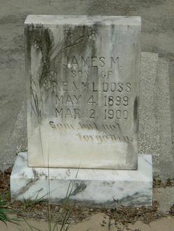 James M Doss