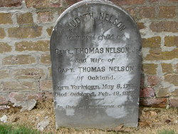 Judith <I>Nelson</I> Nelson