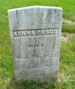 Ashna Pasco