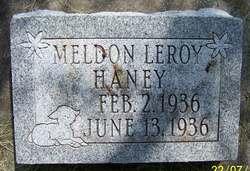 Meldon Leroy Haney
