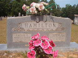 Callie D <I>Houston</I> Hamilton
