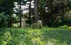 North Dyke Cemetery