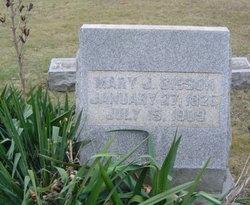 Mary Jane <I>Conn</I> Gibson