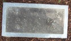 William Henry Bush