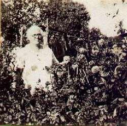 Sophronia Catherine <I>Patty</I> Mabe
