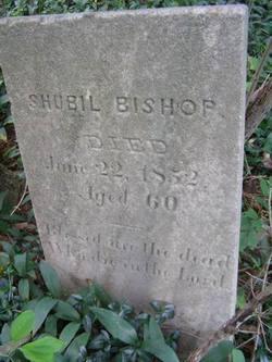 Shubil Bishop