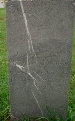 Luman Babcock