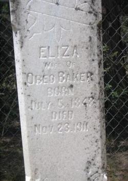 Eliza Louisa <I>Cottle</I> Baker