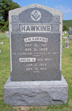Julia Ann <I>Martin</I> Hawkins