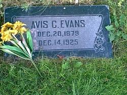 Avis Augusta <I>Clark</I> Evans
